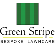 Green Stripe Logo v6-01